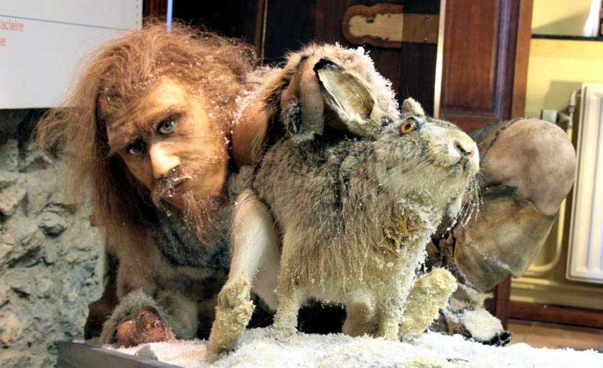 Reconstitution d'une homme de Neandertal à la chasse au lièvre. Provinciaal gallo-romeins Museum, Tongres.